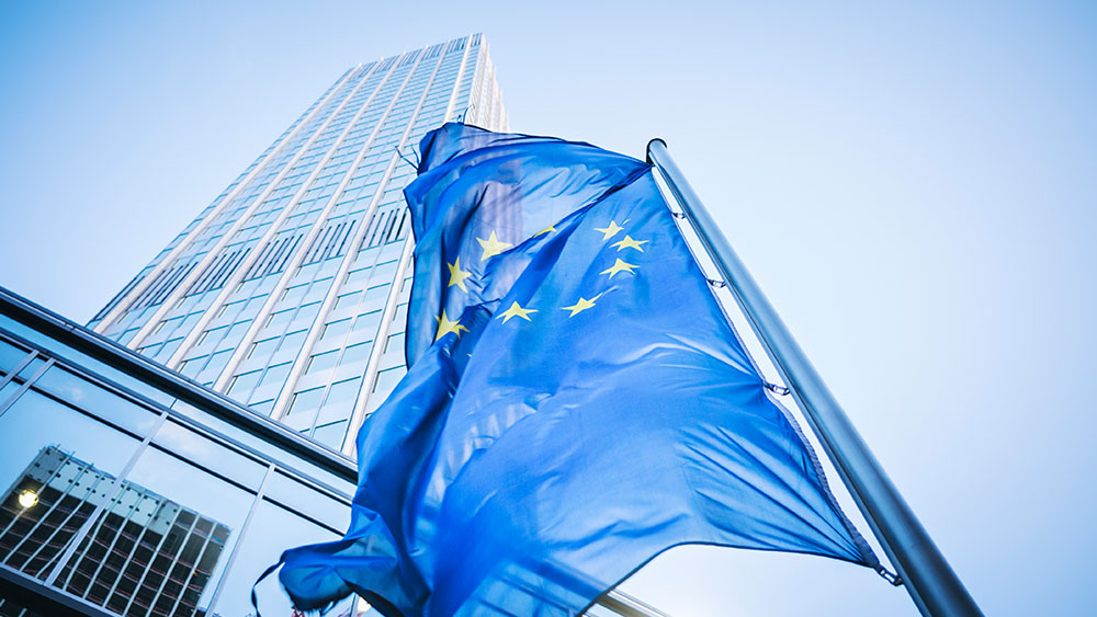 Euro flag in front of a building