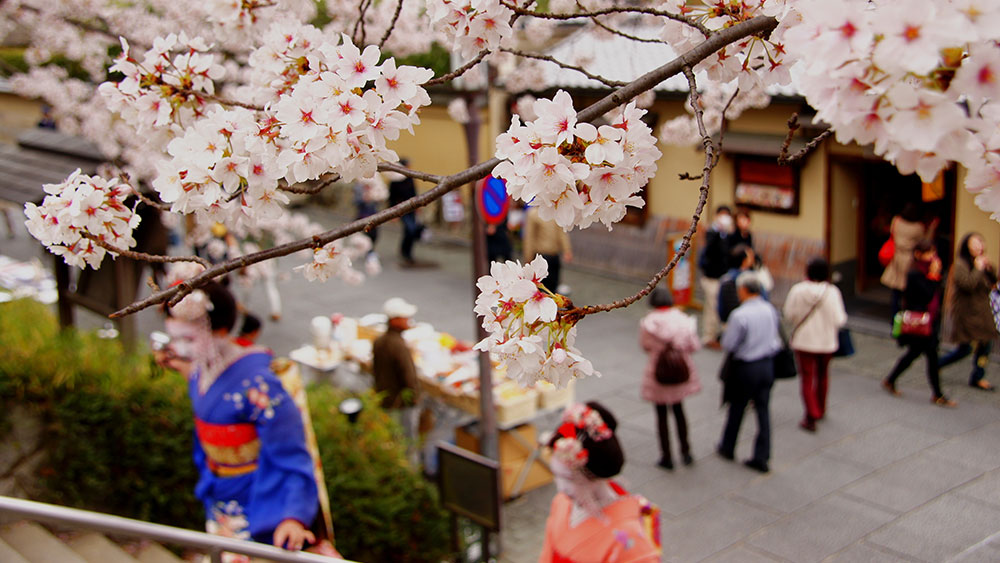When is the best time to go to Japan